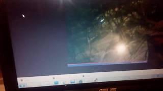 Камера наблюдения на Raspberry pi