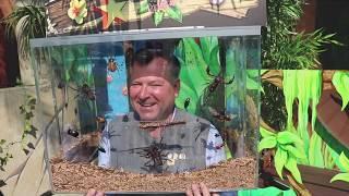 Dschungelcamp - Erstbegehung Oktoberfest 2018 beim Presserundgang (Angelo Agtsch)