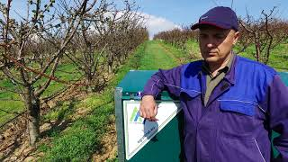 Agrofrost - Kapatovo - Bulgaria
