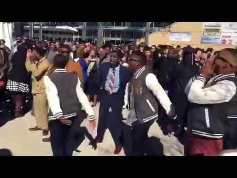 UCF Alphas - 2014 Graduation Step