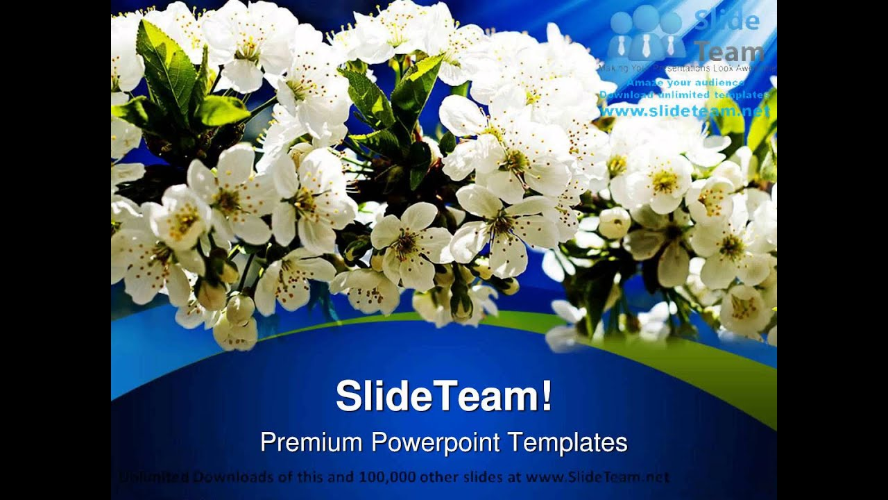 Blooming Flowers Nature Powerpoint Templates Themes And