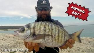 4 GIORNI DI ROCK FISHING ! GROSSI SARAGHI E PAGRI🐟💙🐟💙pescare a maggio in Croazia
