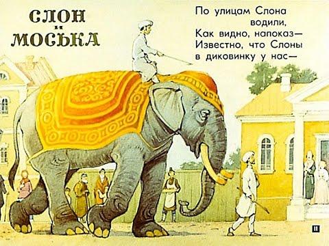 Слон моська мультфильм