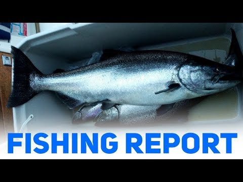 King Fishing Is On Fire In Frankfort, MI - FISHING REPORT