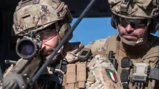 ITALIAN MILITARY  FORCES 2016