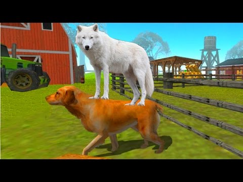 СИМУЛЯТОР СОБАКИ 🐶🐶🐶 #7 ВОЛК мульт-игра про волка развлекательное видео