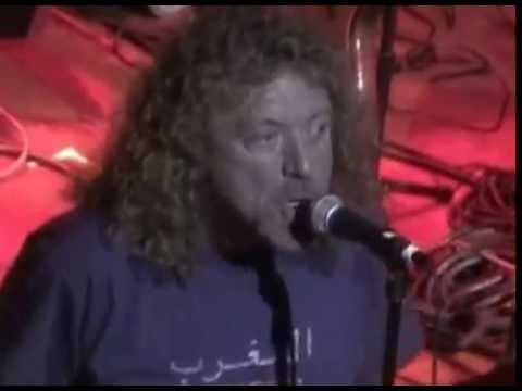 Bummer In The Summer - Robert Plant Feat.Johnny Echols (Arthur Lee Benefit)