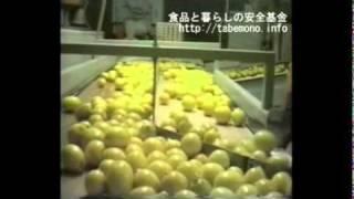 レモンに農薬シャワー(ポストハーベスト農薬) thumbnail