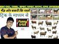 भेड़ और बकरी की प्रमुख नस्ले || ट्रिक के माध्यम से || Funny tricks || Study Motion || By- Dev sir