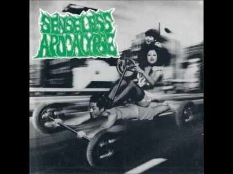 Senseless Apocalypse - Tracks from split w/ Pasztörözött