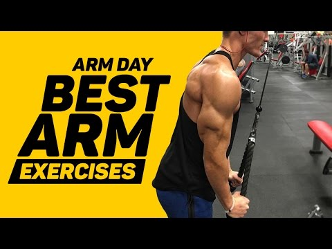 Arm day Best Arm Exercises (3 bicep, 3 tricep)