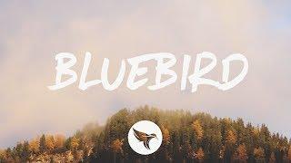 Download Miranda Lambert - Bluebird (Lyrics) Mp3 and Videos