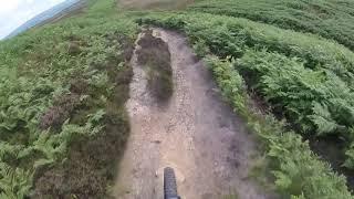 Fighting the Ferns on Ilkley Moor