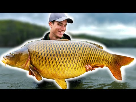 Is This The Greatest Carp Lake In The World?