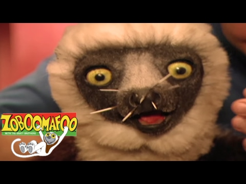 Zoboomafoo 243 Talk To Me Animal Shows For Kids Full