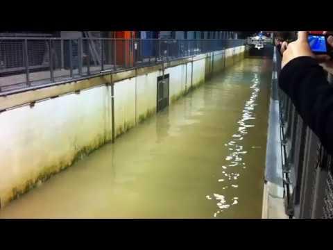 Shocking and fascinating freak wave generator