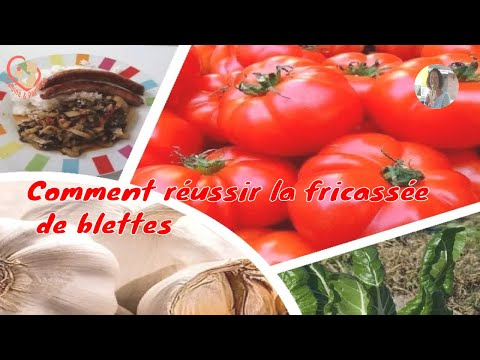 Fricass e de blettes fra ches comment cuisiner des blettes - Comment cuisiner des blettes fraiches ...