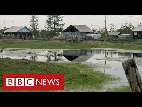 """Scientists say vast areas of Siberia are thawing with """"devastating consequences"""" - BBC News"""