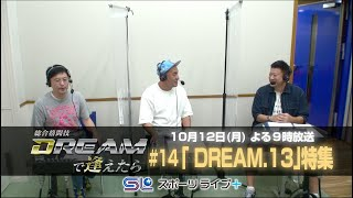 〜DREAM.13〜「総合格闘技 DREAMで逢えたら」by スカパー! | トレーラー