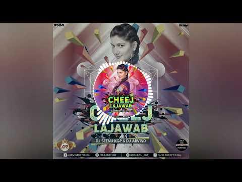 Tu Cheez Lajawab (Remix) Dj Seenu | Dj Arvind
