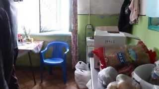 Приют для бездомных в селе Найфельд ЕАО