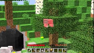 Minecraft Survival (Reboot) Episode 2: A Home!