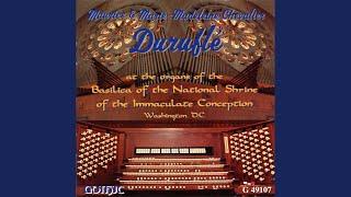 Organ Concerto No. 8 in A Major, Op. 7, No. 2, HWV 307 (arr. for 2 organs) : II. Adagio