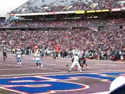 Buffalo Bills Brian Moorman has great punt