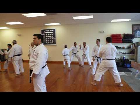 Practicing application of Tekki shodan