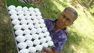 Egg Omelette Masala Curry prepared in my Village by Grandma | Village Life