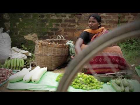 Tribal collective Farming