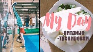 моё питание и тренировки один день из моей жизни
