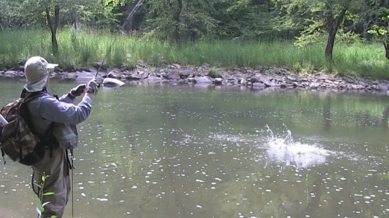 Fishing the bluestone river wv smallmouth bass youtube for Trout fishing in wv