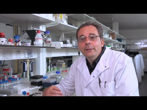 Professor Stefan Knapp at the Target Discovery Institute