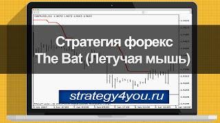 Стратегия форекс The Bat (Летучая мышь)