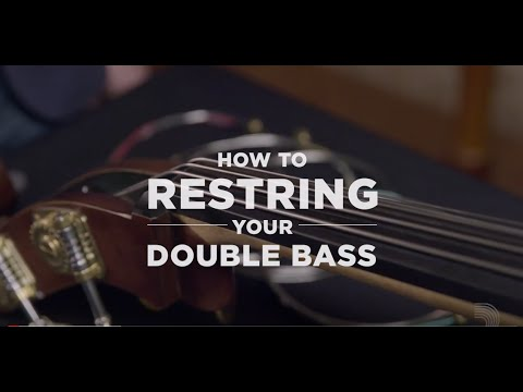 D'Addario Core: How to Restring Your Double Bass