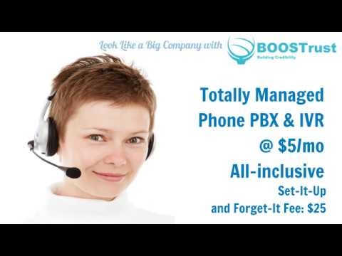Intellogue Cloud Based PBX Service| IVR System | Dedicated Ad Tracking Numbers