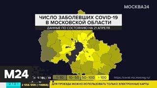 Число заболевших коронавирусом в Подмосковье достигло 5 959 - Москва 24