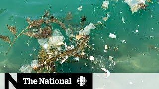 The National for June 9, 2019 — Plastics Ban, Raptors Game 5, Hong Kong Protests