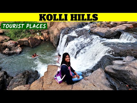 KOLLI HILLS | Places To Visit | Kollimalai | Food | Ride To Kolli Hills | Tamil | Vlog | Trip