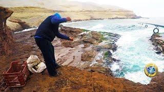 PESCA de lornas sobre rocas   Fishing on rocks