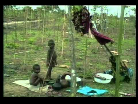 Ken Saro Wiwa: 1995 Goldman Prize winner, Nigeria