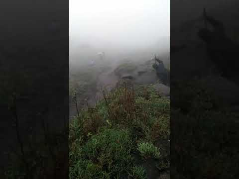 TheVelliangiriMountains, (Tamil: வெள்ளியங்கிரி மலை) a part of the Nilgiri Biosphere Reserve