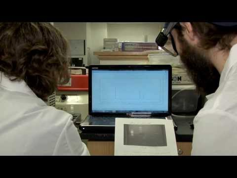 West Virginia University -- NanoSAFE - Excellence in Interdisciplinary Science