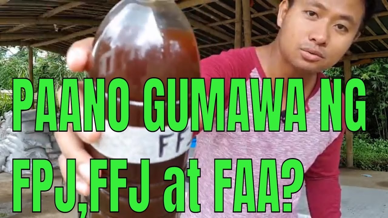 Download Techno-Feature: Pag-gawa ng FPJ,FFJ at FAA or the 3 basic organic concoctions