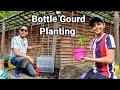 Best Way To Grow Bottle Gourd | Ali Raja Garden 2020