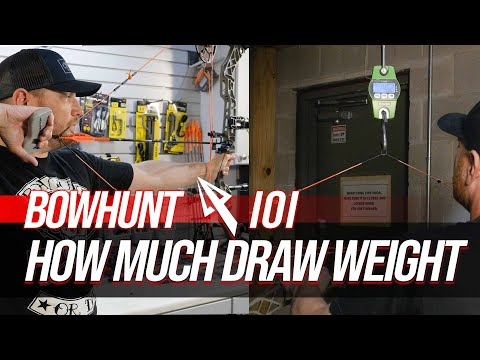 How Much Draw Weight Do You Need For Bowhunting?