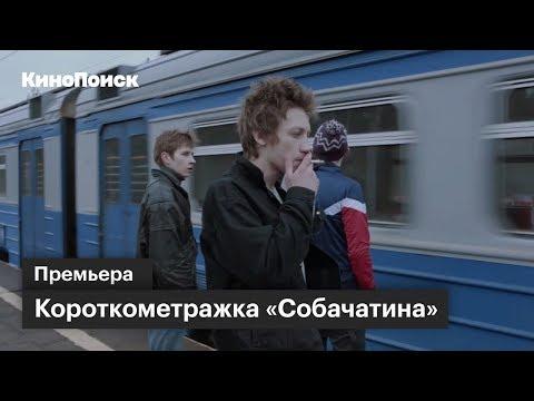 Короткометражка «Собачатина» по