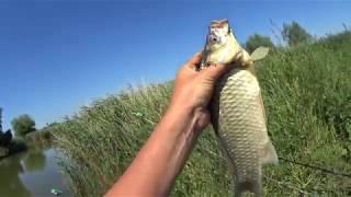 Крупный карась .Рыбалка на азовских каналах.