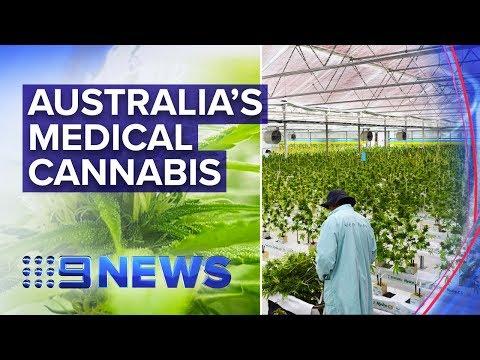 Inside Australia's First Fully Operational Medical Cannabis Farm | Nine News Australia